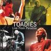 Toadies - Possum Kingdom  Live