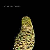 Cataracts - Andrew Bird