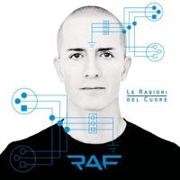 RAF - Non E' Mai Un Errore