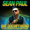 She Doesn't Mind (Remixes) - Single