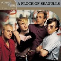 A Flock Of Seagulls