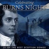 Celebrating Burns Night - 21 Of the Best Scottish Songs