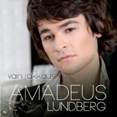 Amadeus Lundberg - Vain Rakkaus artwork