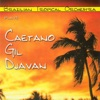Brazilian Tropical Orchestra Plays Caetano Gil Djavan, Brazilian Tropical Orchestra