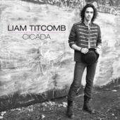 Landslide - Liam Titcomb