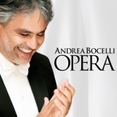 Turandot, Act 3: Nessun dorma - Andrea Bocelli, Vladimir Fedoseyev, Moscow Radio Symphony Orchestra, Victor Popov & Academy Of Choir Art Of Russia