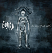 Download GOJIRA - Vacuity