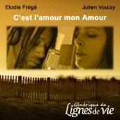C'est l'amour mon amour (Générique de « Lignes de vie ») - Single