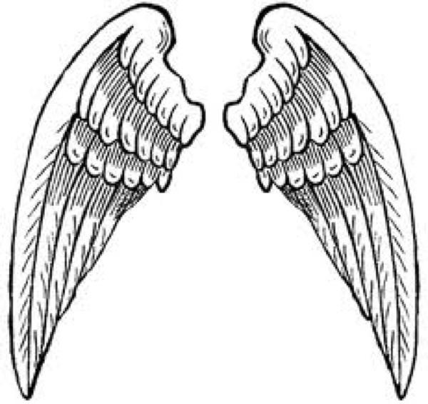 Angelwings - Podcast med danske angel investorer