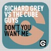 Richard Grey & The Cube Guys