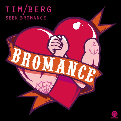 Seek Bromance (Avicii Vocal Edit) - Tim Berg