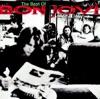 Crossroad - The Best of Bon Jovi, Bon Jovi