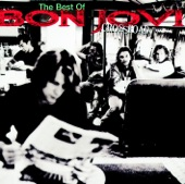 Crossroad - The Best of Bon Jovi