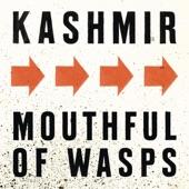 Mouthful of Wasps - Single