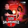 Salamanele 2, Florin Salam