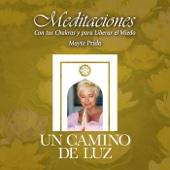 Meditaciones Con Tus Chakras Y Para Liberar El Miedo