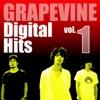 Digital Hits vol.1 - EP ジャケット写真