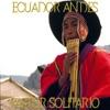 Pastor Solitario Ecuador Andes - Single, Fly Project