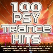 100 Psytrance Hits - Best of Electronic Dance Music, Goa, Progressive, Techno, Psychedelic, Acid House, Hard Dance, Trance Anthem - Various Artists