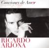 Canciones de Amor: Ricardo Arjona, Ricardo Arjona