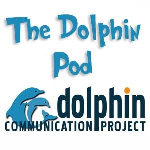 The Dolphin Pod (new feed)