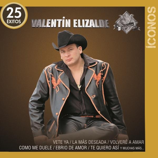 Íconos Valentín Elizalde   25 Éxitos Valentin Elizalde CD Cover