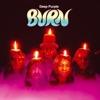 Burn (30th Anniversary Edition), Deep Purple