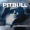 I Am Armando - Armando Reloaded, Pitbull