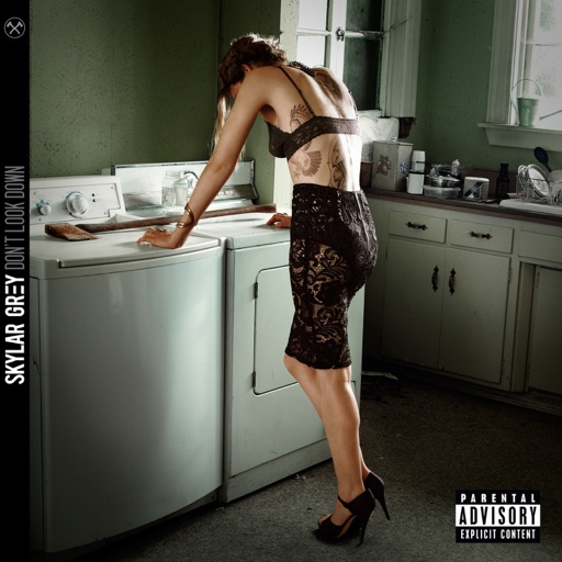 Final Warning - Skylar Grey