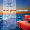The Michael Jackson Cool Down Experience (Performed By The Sunset Lounge Orchestra)
