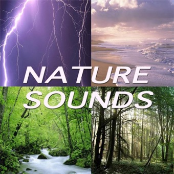 Everything in Nature (Nature Sounds) – Nature Sounds