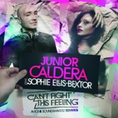 Can't Fight This Feeling (feat. Sophie Ellis-Bextor) - EP