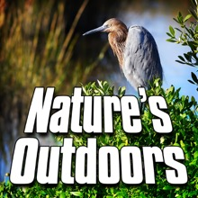 Nature's Outdoors (Nature Sound) - Single, Sounds of the Earth