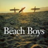 The Warmth of the Sun, The Beach Boys