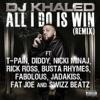 All I Do Is Win (Remix) [feat. T-Pain, Diddy, Nicki Minaj, Rick Ross, Busta Rhymes, Fabolous, Jadakiss, Fat Joe & Swizz Beatz] - Single, DJ Khaled