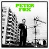 Start:10:57 - Peter Fox - Haus Am See