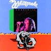 Ain't No Love In the Heart of the City - Whitesnake