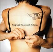 Aerosmith - Cryin' artwork