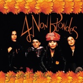 4 Non Blondes - What's Up Grafik