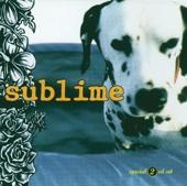 Sublime - Wrong Way artwork