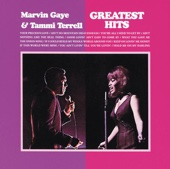 Marvin Gaye & Tammi Terrell - Ain't No Mountain High Enough Grafik