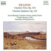 Brahms: Clarinet Trio, Op. 114 and Clarinet Quintet, Op. 115