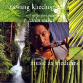 Music As Medicine (With Special Guest Artist R. Carlos Nakai)