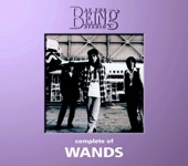 Complete of WANDS: At the Being Studio