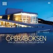 Operaboksen (Fra La Traviata Til Tryllefløyten)