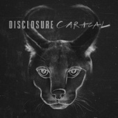 Magnets (feat. Lorde) - Disclosure Cover Art