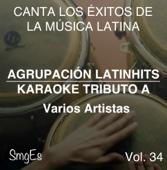 Instrumental Karaoke Series: Varios Artistas, Vol. 34 (Karaoke Version)