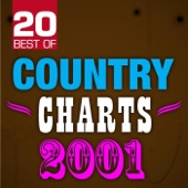 20 Best of Country Charts 2001