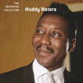 Muddy Waters - The Definitive Collection  artwork