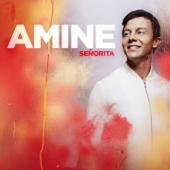 [Download] Señorita MP3